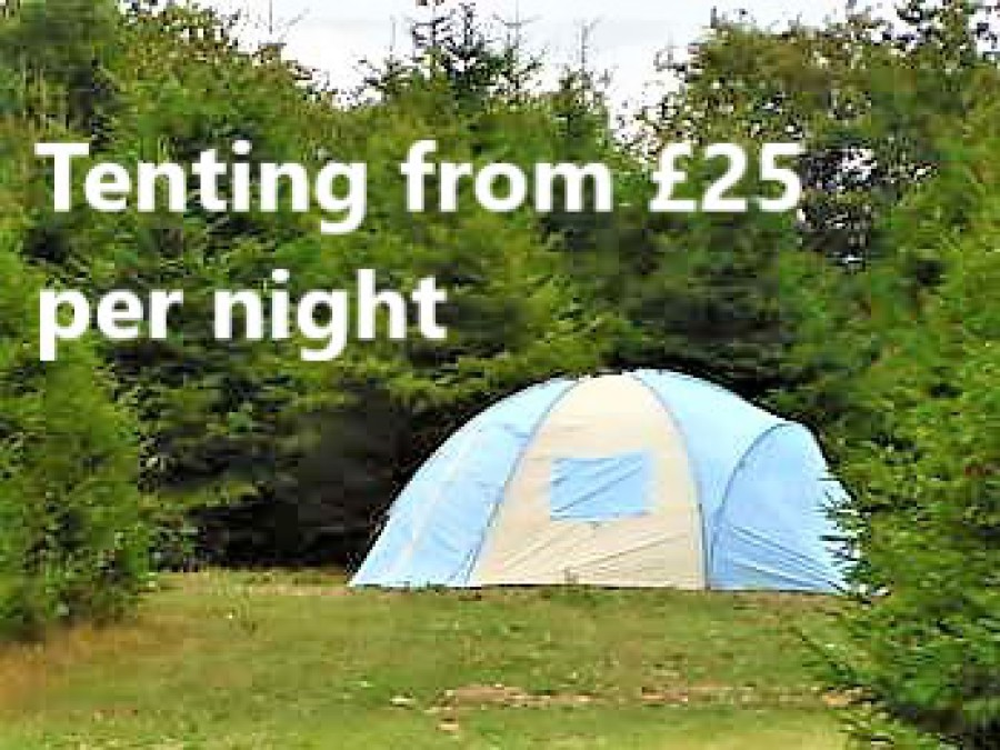 Tent Located In Trees, Words Reading Tenting From £15 Per Night